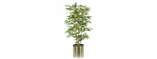 Japanese Bamboo Set In Brushed Stainless Steel Planter