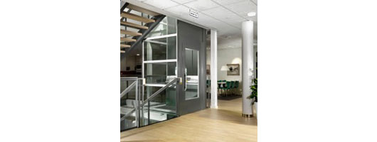 Swedish Style 250kg Rated Residential Platform Lift