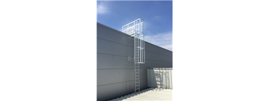 Roof Access and Fixed Access Ladders