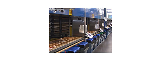 Automated storage for high volume, heavy duty, high speed picking