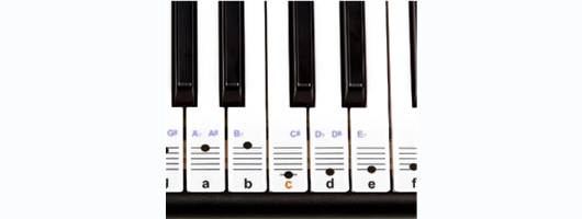 Keysies Transparent Plastic Removable Piano and Keyboard Note Stickers - Plus Handy Placement Guide