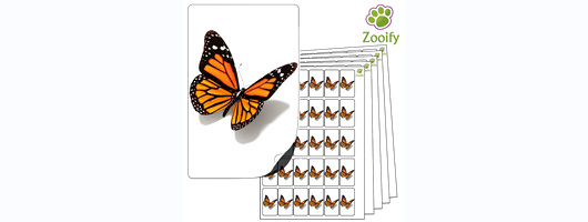480x Butterfly Stickers (38 x 21mm) High Quality Self Adhesive Animal Labels By Zooify