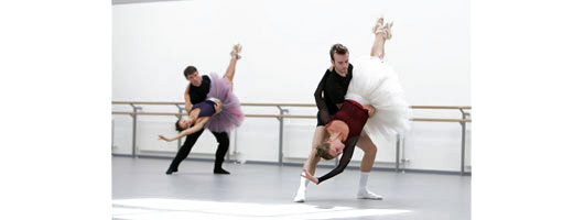 Harlequin Woodspring with Cascade at Scottish ballet