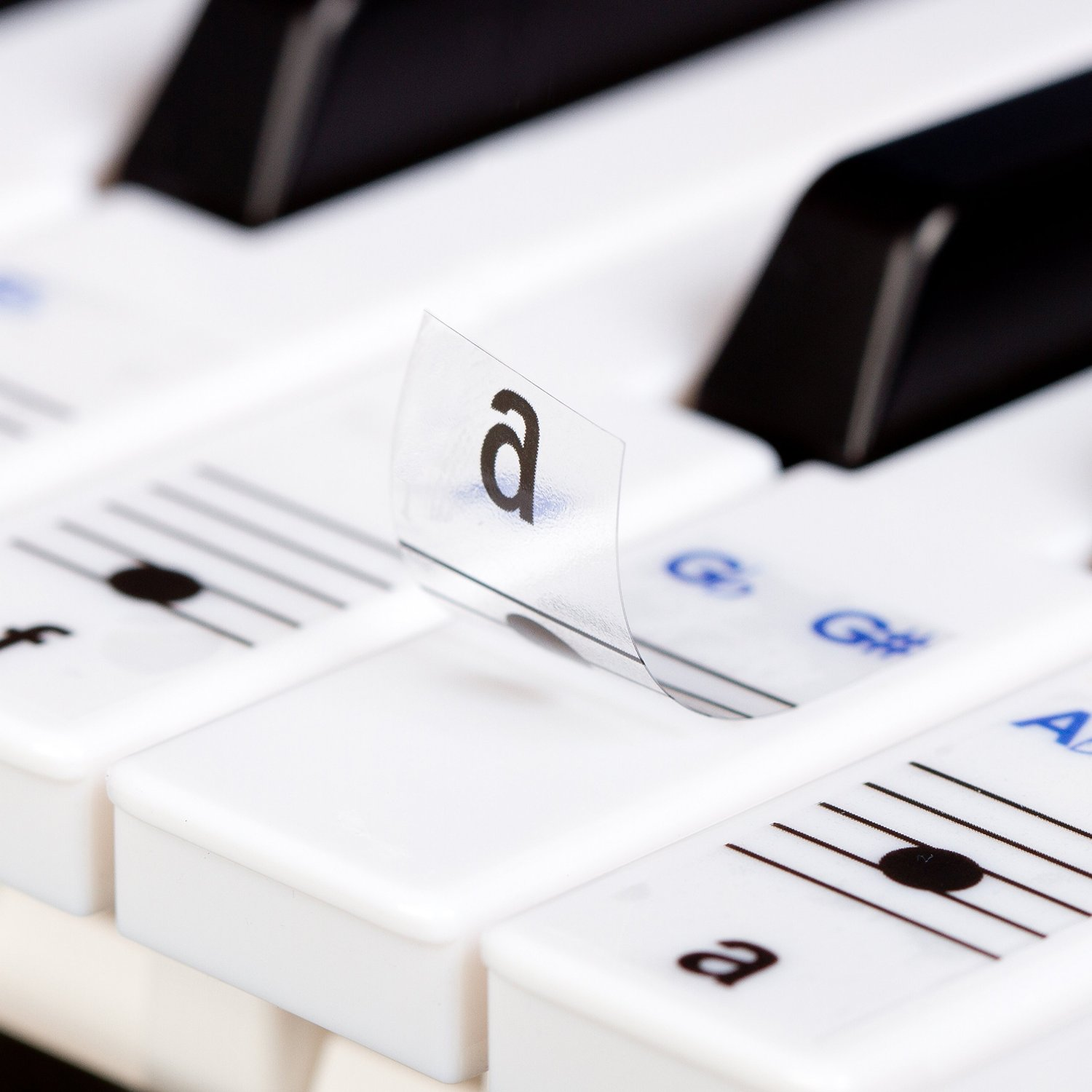 Keysies Transparent Plastic Removable Piano and Keyboard Note Stickers