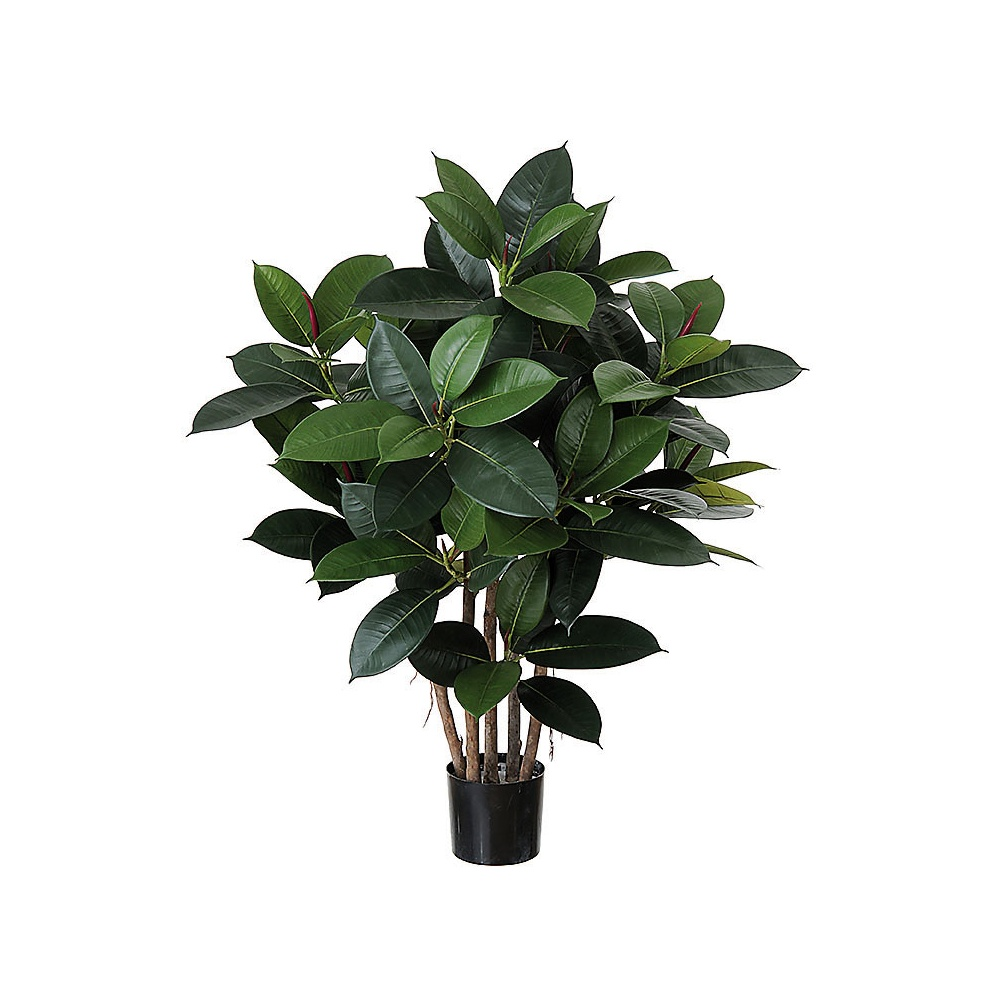 Artificial Short Rubber Plant