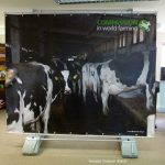 Tension, Rigid and free standing Banner Stands