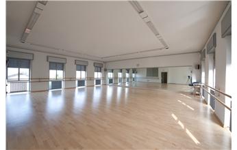 Harlequin Fiesta Vinyl Dance & Performance Floor